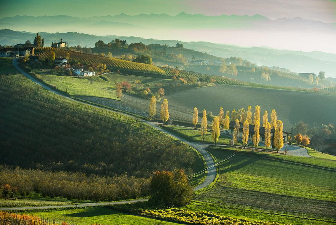 http://www.viaggiavventurenelmondo.it/immagini/langhemonferrato.jpg