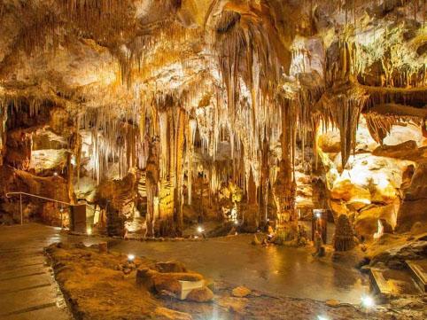http://www.viaggiavventurenelmondo.it/immagini/pugliamia1.jpg
